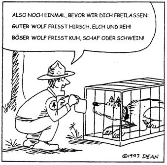 Rückkehr von Bär, Wolf und Luchs in den Alpen