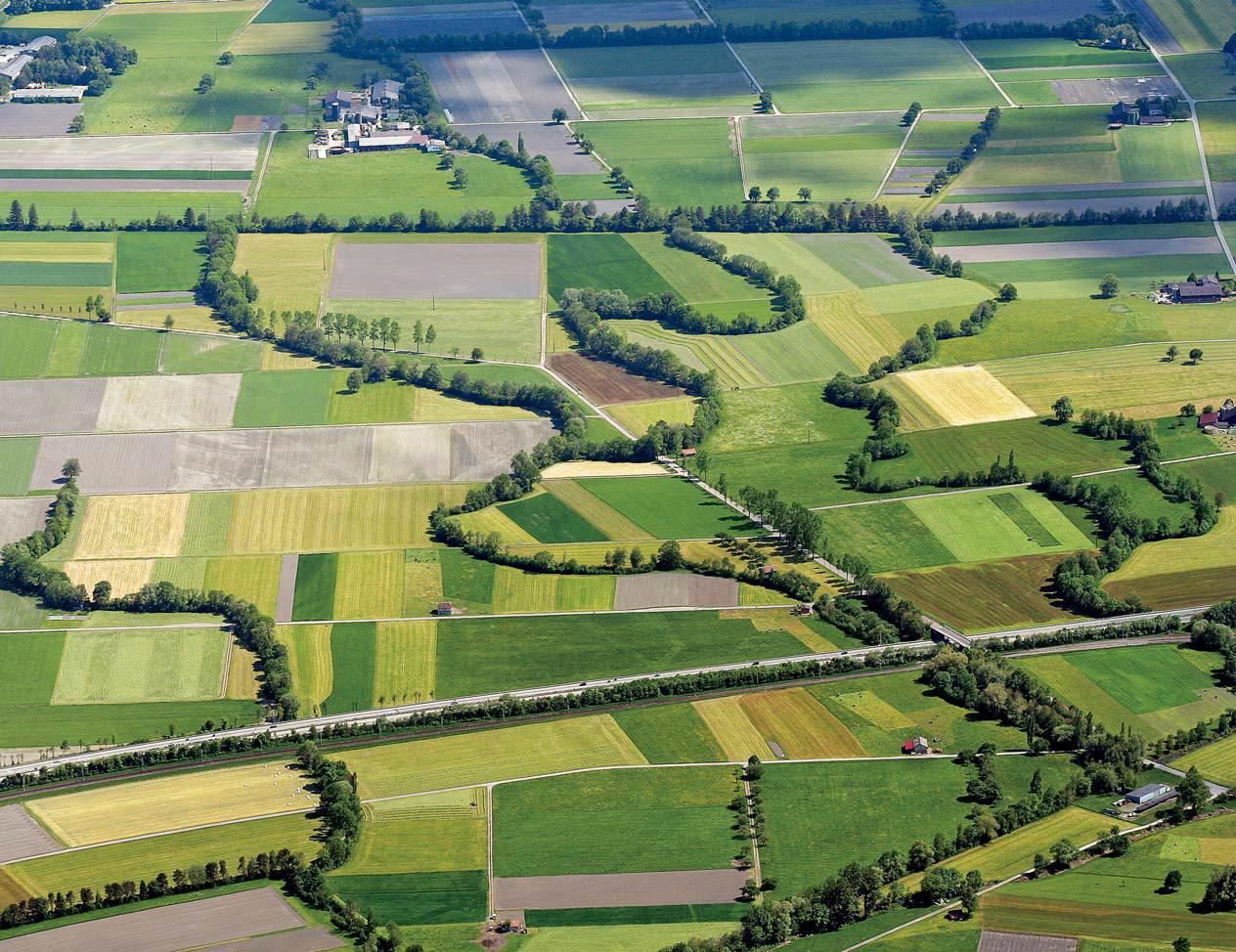 Biodiversität – alte Herausforderungen, neue Chancen