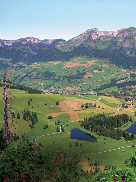 Zwischen Heidiland und Wildnis