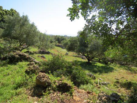 Die 44. Mediterranfahrt: Kefalonia