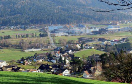 Insektensterben in Liechtenstein – was tun?