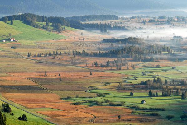 Das Inventar der Flachmoore der Schweiz von nationaler Bedeutung