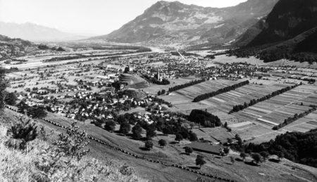 Flurgehölze in Liechtensteins Talebene