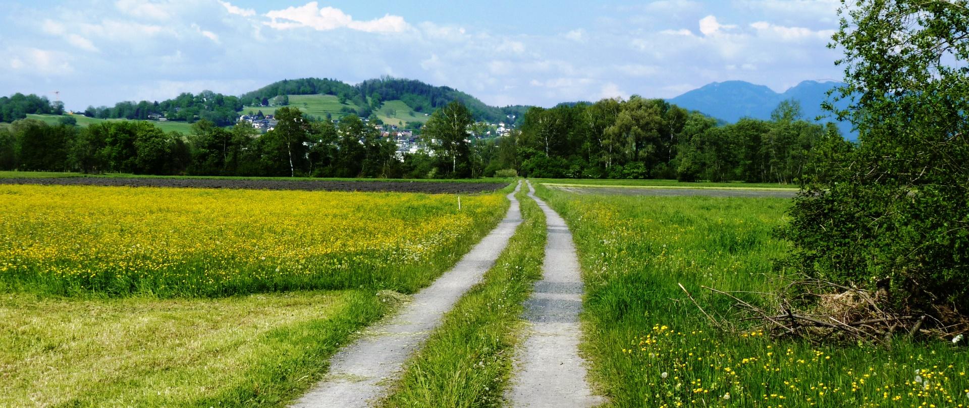 Die Versiegelung der Landschaft – ein Gutachten, das mich sensibilisierte