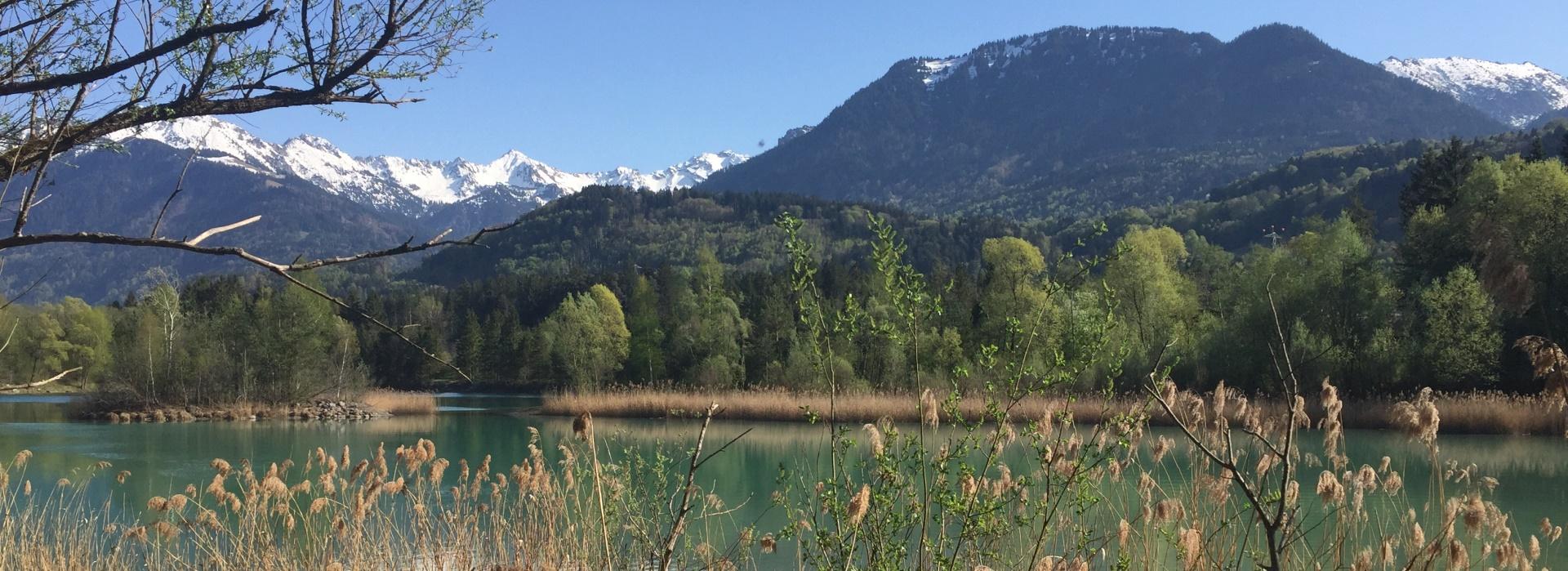 Die Sanierung von sechs Baggerseen im Walgau (Vorarlberg)